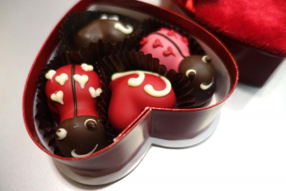 Heavenly Chocolate Love Bugs