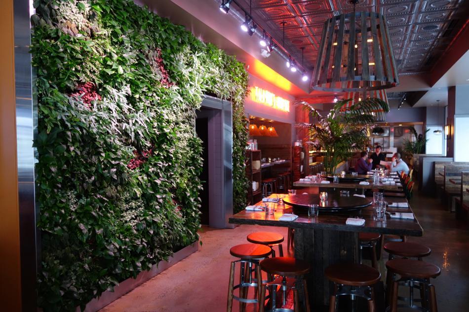 Tiger Mama Plant Wall