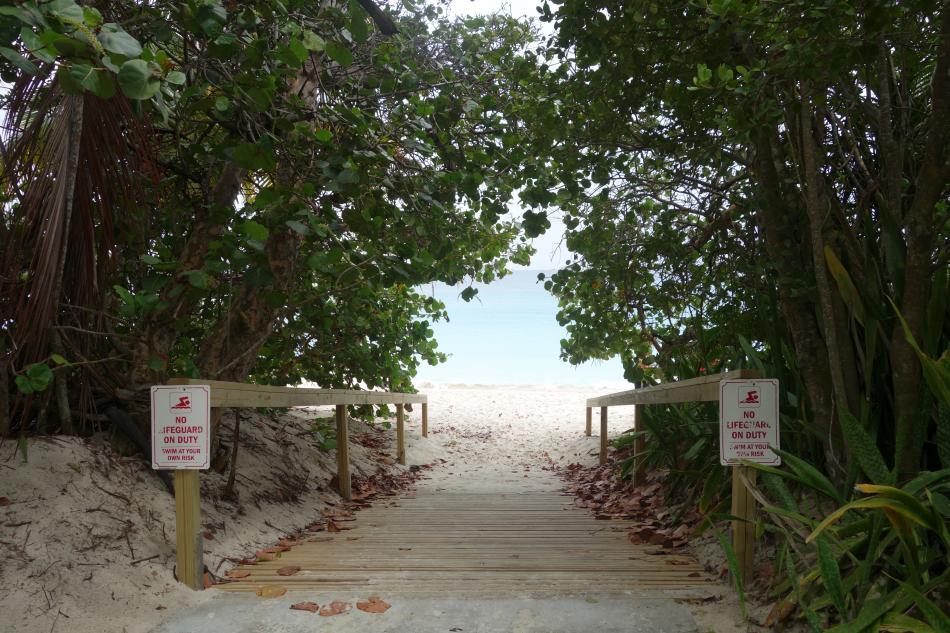 Trunk Bay Path