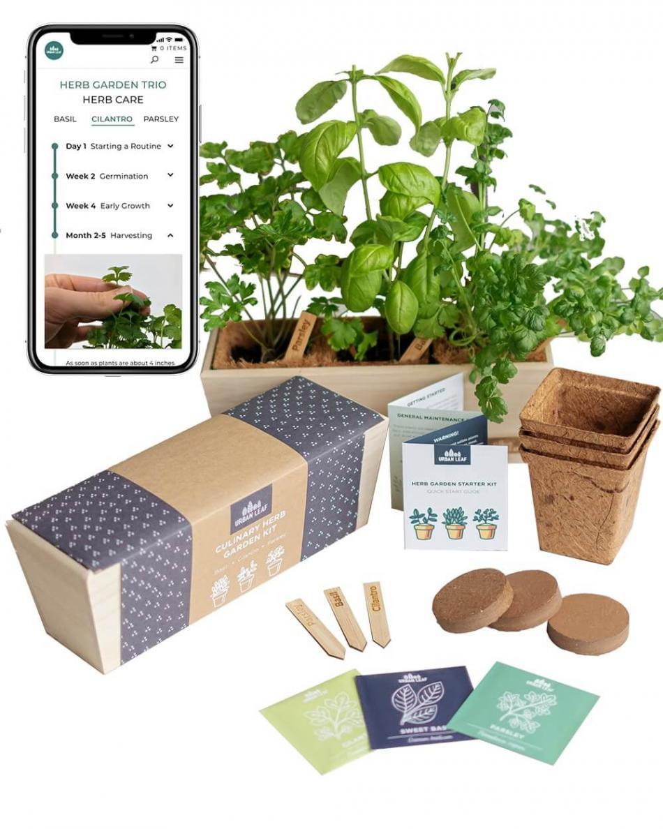 Herb Growing Kit