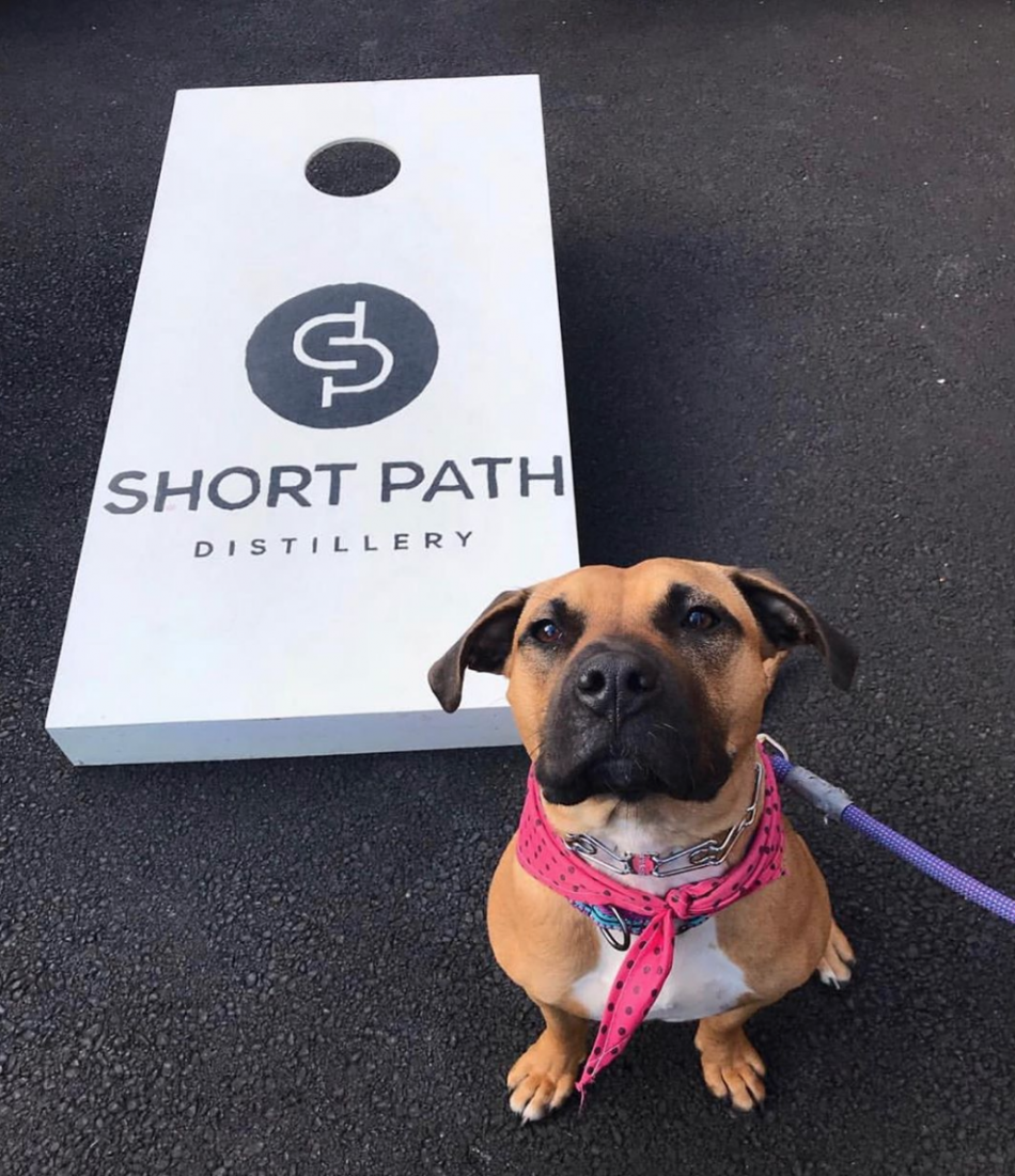 Short Path Distillery
