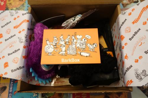 Photo of the box topped with a Halloween card that depicted pups in costume.